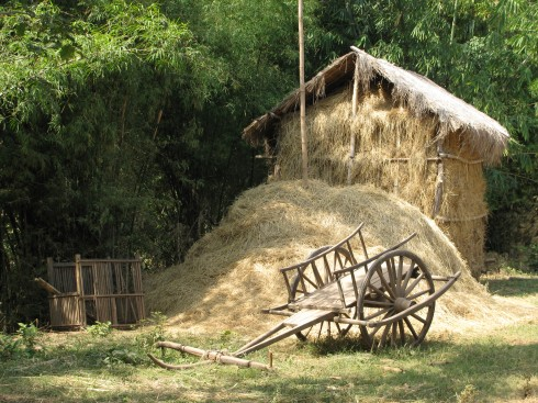 ox cart and hay hut