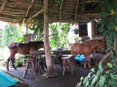 Nature Lodge bar/restaurant, Senmonorom, Mondulkiri Province, Cambodia